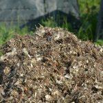 Podstielka a uhlíkatý materiál. Neoddeliteľná súčasť vermikompostovania.