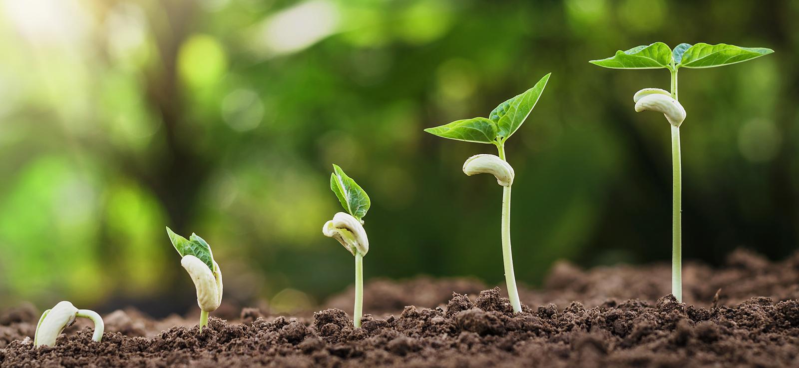 OZ Kompostujme rozširuje v Źiline sieť komunitných kompostérov