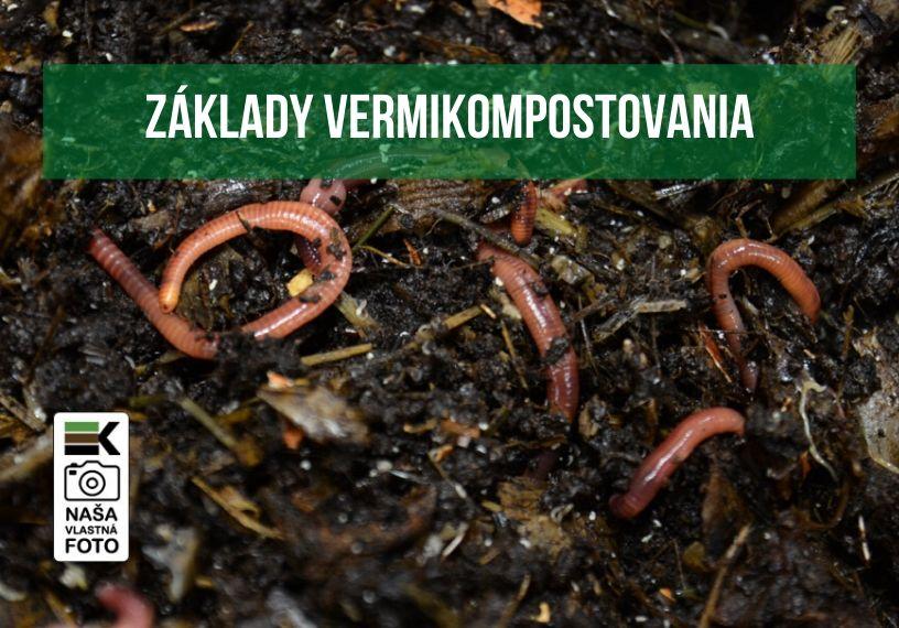 Základy vermikompostovania
