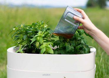 Organické hnojivo od dážďoviek: Vermikompost robí v záhrade zázraky