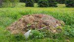 kalifornské dážďovky v komposte