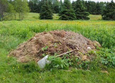 Ako na prvotriedny kompost: Takto to zvládnete ľavou zadnou
