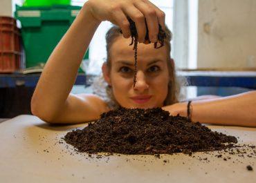 Kalifornské dážďovky pomáhajú aj vonku: Viete, čo dokáže záhradný kompostér?